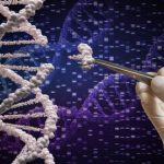 Система редактирования генов CRISPR-Cas9 показывает очень низкий риск ошибок