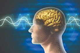Как ритмы мозга помогают управлять вниманием