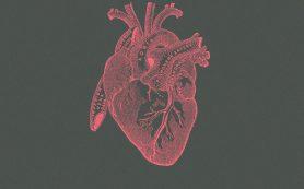 Первому пациенту пересадили полученные из стволовых клеток кардиомиоциты