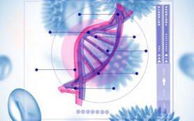 Таргетирование метаболизма холестерина в макрофагах для устранения вирусной инфекции