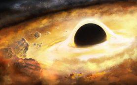 Астрономы проводят поиски «памяти» гравитационных волн