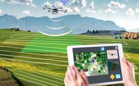 «Электронный агроном» даст фермеру прогноз на урожай