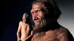 В генах африканцев оказалось много неандертальцев