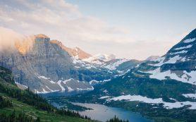 Холодолюбивые водные беспозвоночные смогли пережить таяние ледников