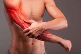 Решение проблемы атрофированных мышц