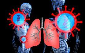 SARS-CoV-2 — зачем сдавать тест на антитела?