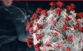 Исследование: курение увеличивает риск заболевания COVID-19