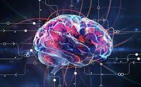 При болезни Альцгеймера мозг видит старое как новое