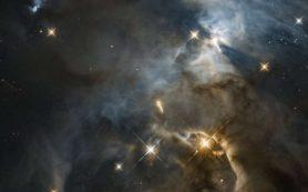 Хаббл запечатлел новый планетообразующий диск