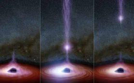 Первые наблюдения исчезновения короны черной дыры и ее повторного появления