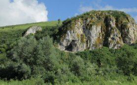Ученые РФ и ФРГ секвенировали геном неандертальца из Чагырской пещеры на Алтае
