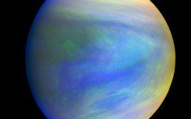 Может ли существовать жизнь в облаках Венеры?