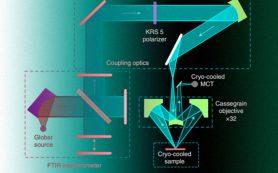 Фотоны связали электроны и дырки в полупроводнике