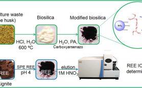 Извлечь и определить редкоземельные элементы помогут сорбенты на основе биокремнезема