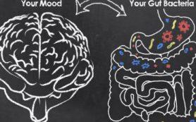 Как плохой сон влияет на кровяное давление и микробиом кишечника?