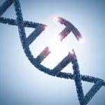 Российские ученые создали новый сборщик для чтения геномов микробных сообществ