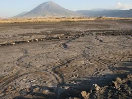 В Нью-Мексико нашли самую длинную «тропинку» ледникового периода