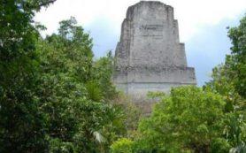 У древних майя обнаружили сложную систему фильтрации воды