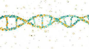 Как генетические изменения влияют на состав метаболитов