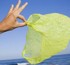 Пакет не нужен: биополимеры – на смену пластику