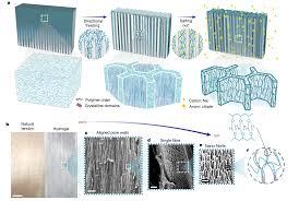 Химики создали искусственные сухожилия