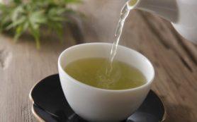 Антиоксидант в зеленом чае борется с опухолями и восстанавливает ДНК