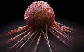 Устойчивость раковых клеток легкого к препаратам зависит от витамина В1