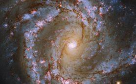 «Хаббл» делает снимок завораживающей спиральной галактики М61