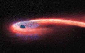 Первые наблюдения силуэта звезды, растянутой в «спагетти»