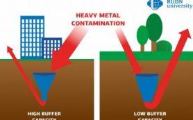 Почвоведы РУДН пересмотрели подход к мониторингу загрязнения почв