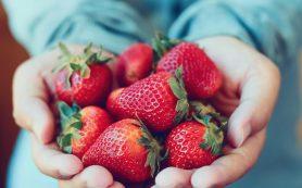 Чем полезна клубника? Польза для сердца, мозга и иммунитета