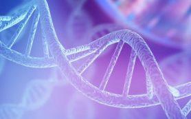 Ученые глубже поняли механизмы восстановления поврежденной ДНК