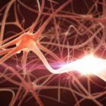 В МГНЦ изучают генетические основы патогенеза шизофрении