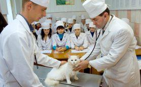 Обучение специальности ветеринар