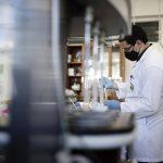 Потенциально опасные генетические варианты SARS-CoV-2 объединили в единую глобальную систему