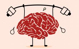 Программирование это разминка мозга