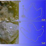 Палеонтологи нашли следы последних британских динозавров