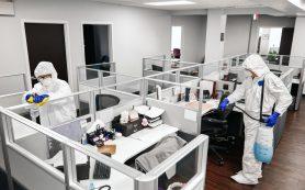 Проведение дезинфекции офисов