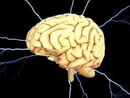 Мозг предвидит будущее, слушая музыку
