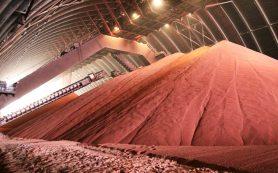 Показатель экспорта калийных удобрений за первое полугодие увеличился на 65%
