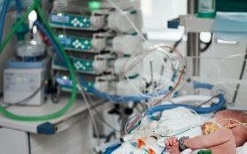Ученые разрабатывают прототип искусственного клапана сердца для детской кардиохирургии