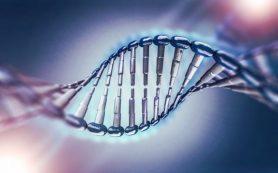 Анализ экспрессии генных ансамблей поможет в диагностике патологий