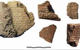 Археологи нашли в Турции древнейшую хеттскую мозаику