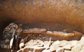 В пазырыкском могильнике нашли погребение в каменном ящике и четыре черепа животных